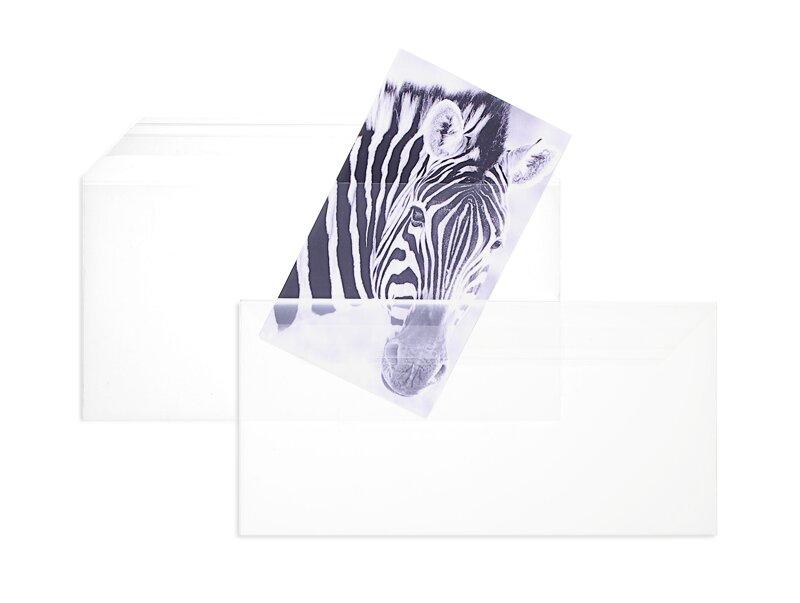 87acf98383 Durchsichtige Folienumschläge Glasklar 110 x 220 mm (DIN Lang) | 100 my  Polypropylen
